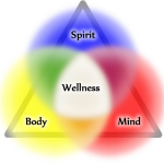 Mechanics of true Holistic Wellness