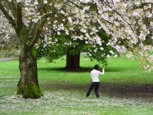 Fitness and Health with Tai Chi