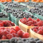 Can you eat fruits in a low carb diet?